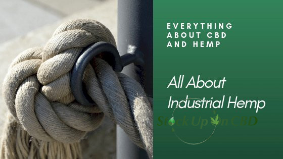 All About Industrial Hemp