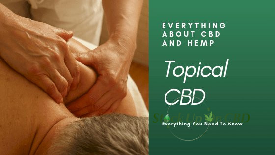 Topical CBD: Everything You Need To Know