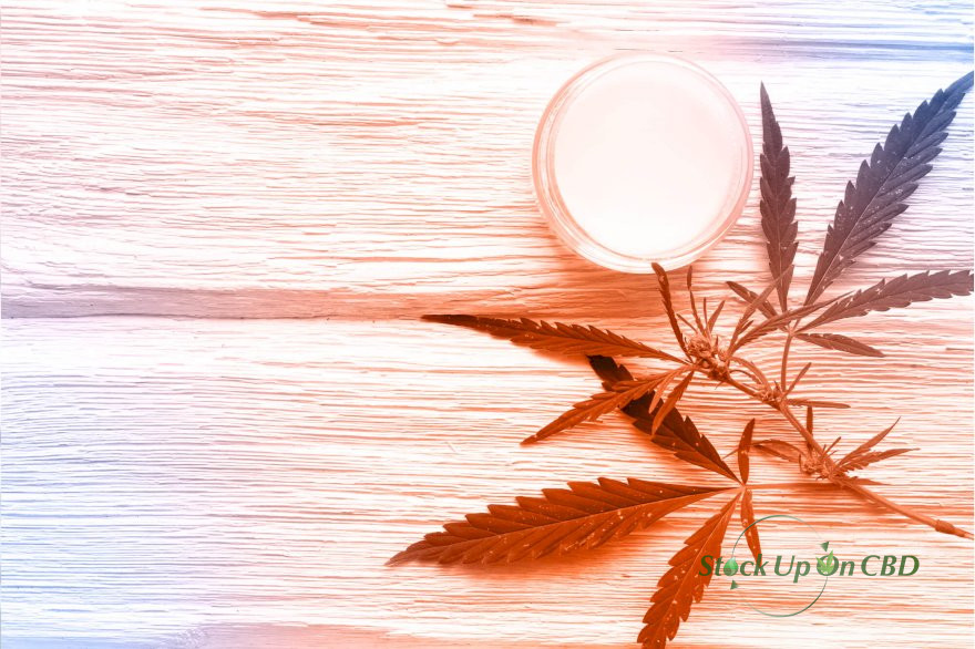 CBD AND YOUR SKIN: THE THERAPEUTIC POTENTIAL OF TOPICAL PRODUCTS